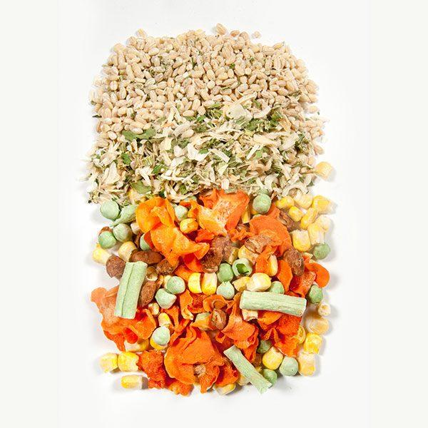 Garden Vegetable Ingredients